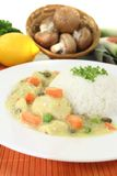 Chicken fricassee with capers Royalty Free Stock Photo