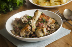Chicken Fricassee Royalty Free Stock Photos