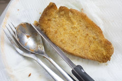 Chicken fried cotoletta Royalty Free Stock Photography