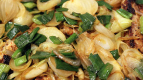 Chicken with fried onions. Grilled chicken with delicious fried spring onions Stock Photo