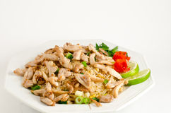 Chicken Fried Rice Royalty Free Stock Photo
