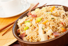 Chicken Fried Rice. With bacon vegetables and scrambled eggs in a gourmet sauce. Selective focus with shallow DOF. Natural light in the background Stock Photography