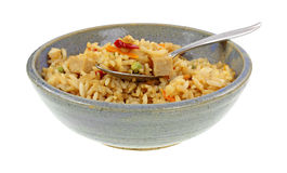 Chicken Fried Rice on Spoon Stock Image
