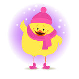 Chicken girl in winter clothes on the winter background. Christm Stock Image
