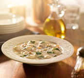 Chicken and gnocchi soup Royalty Free Stock Photography