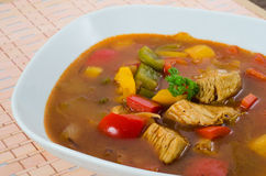 Chicken Goulash. Close view on a deep dish of chicken goulash soup with different vegetables Royalty Free Stock Image
