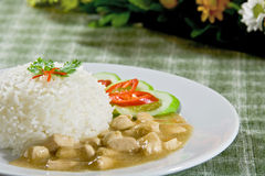 Chicken in gravy sauce rice Royalty Free Stock Photo
