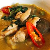 Chicken in green curry. Chicken, entrails, blood in green curry and red chili on Stock Photos
