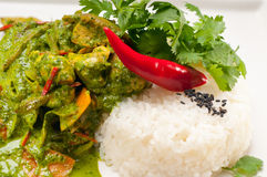 Chicken with green curry vegetables and rice Royalty Free Stock Photo
