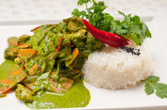 Chicken with green curry vegetables and rice Stock Photography