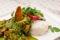 Chicken with green curry vegetables and rice Royalty Free Stock Image
