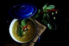 Chicken green curry (แกงเขียวหวานไก่) Royalty Free Stock Photo