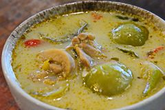 Chicken Green Curry Stock Photography