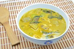 Chicken green curry soup Royalty Free Stock Photo