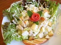 Chicken Green Salad Royalty Free Stock Photo