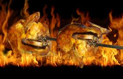 Chicken on grill. Two chicken on grill on background of flames royalty free stock photo