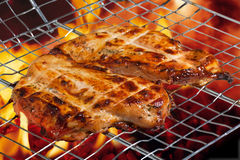 Chicken on the grill Stock Images