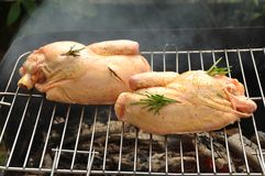 Chicken on grill Royalty Free Stock Photo