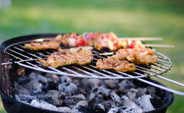 Chicken on grill. In the nature Stock Photography