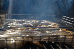 Chicken on a grill Stock Image