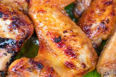 Chicken grill over the banana leaf Stock Photos