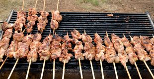 Chicken grill skewers Stock Image