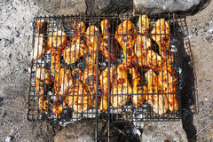 Chicken grille Stock Photos
