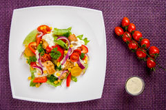 Chicken gyros salad Royalty Free Stock Photo