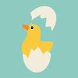 Chicken hatches from the egg. Sweet yellow easter chicken sitting waiting for easter vector illustration