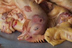 Chicken head. Fresh slaughtered chicken at the market Stock Photography