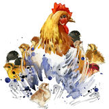 Chicken hen and chickens T-shirt graphics, chicken family illustration with splash watercolor textured background. illustration wa Stock Photo