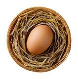 Chicken or hen egg on straw in wicker basket Stock Photo