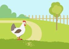 Chicken hen farm habitat flat cartoon vector farm animals birds. Chicken hen farm habitat background flat design cartoon vector farm animals birds. Flat zoo Royalty Free Stock Images