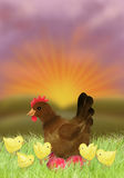 Chicken and hen in the sunset Royalty Free Stock Photography