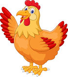 Chicken hen waving hand Royalty Free Stock Photos
