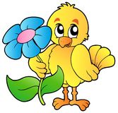 Chicken holding big flower Royalty Free Stock Photography