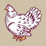 Chicken icon, hand drawn style royalty free illustration
