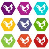 Chicken icons set 9 vector. Chicken icons 9 set coloful isolated on white for web Stock Image
