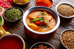 Chicken Jalfrazy indian food recipe and spices Royalty Free Stock Photo