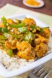 Chicken Jalfrezi - Indian or Pakistani Curry Royalty Free Stock Photography