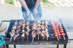 Chicken kebab for dinner royalty free stock photo