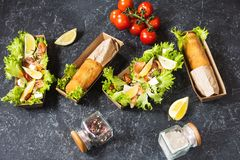 Chicken Kiev cutlets and Salad with smoked salmon in takeaway Box. Ukrainian tradition food royalty free stock photo