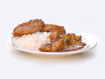Chicken Korma. With Rice and Kebab Stock Images