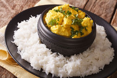 Chicken Korma - Chicken on a mildly spiced creamy sauce with ric Stock Image
