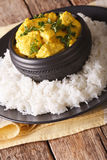Chicken Korma of coconut and cream sauce served in a rice. Verti Stock Image