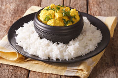Chicken Korma on a mildly spiced creamy sauce close-up. Horizont Stock Images
