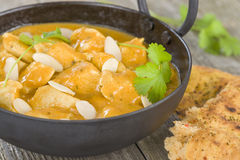 Chicken Korma. Chicken on a mildly spiced creamy sauce. Indian cuisine Stock Photography