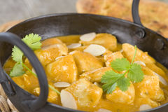 Chicken Korma. Chicken on a mildly spiced creamy sauce. Indian cuisine Stock Photos
