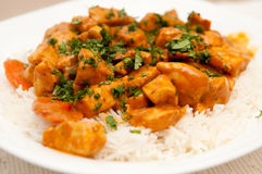 Chicken korma, a spicy Indian themed meal of diced chicken, rice and creamy korma sauce topped with chopped cilantro Royalty Free Stock Photography