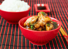 Chicken Kung Pao - traditional Chinese dishes.  Stock Photography